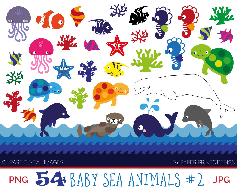 Sea Otter clipart baby sea turtle #13