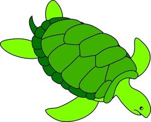 Sea Turtle clipart Free Sea Clipartix art turtle