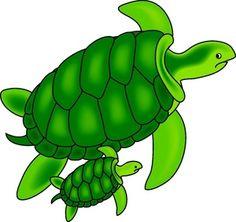 Sea Turtle clipart Clipartix turtles Sea clip turtles