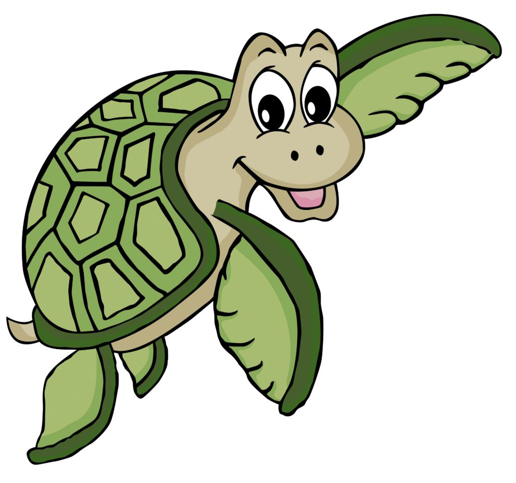 Sea Turtle clipart funny #4
