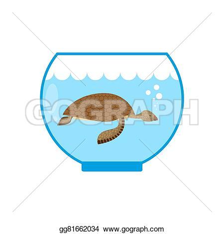 Sea Turtle clipart water animal #4