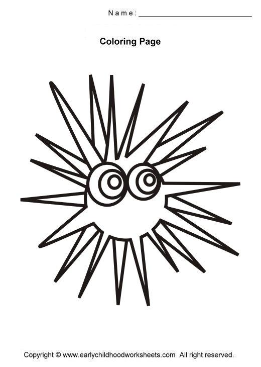 Sea Urchin clipart black and white #1