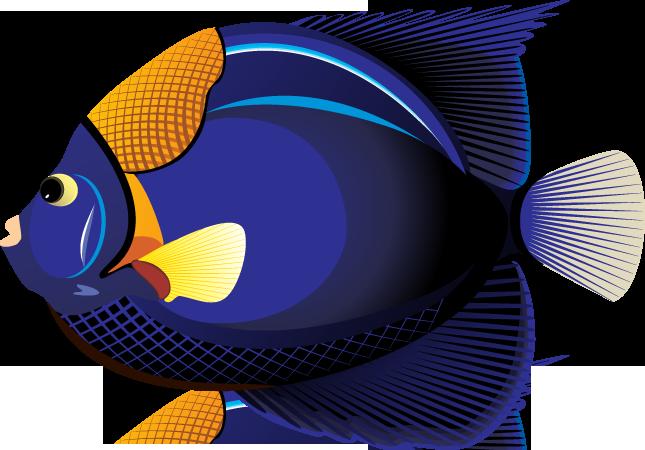 Angelfish clipart tropical fish Panda Free Clipart Clip Fish