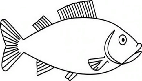 Fins clipart black and white And black com fish outline