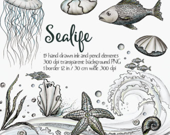 Seafood clipart invertebrate White ink ocean black and