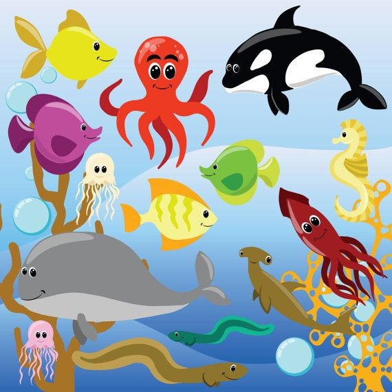 Tropical Fish clipart underwate animal #1