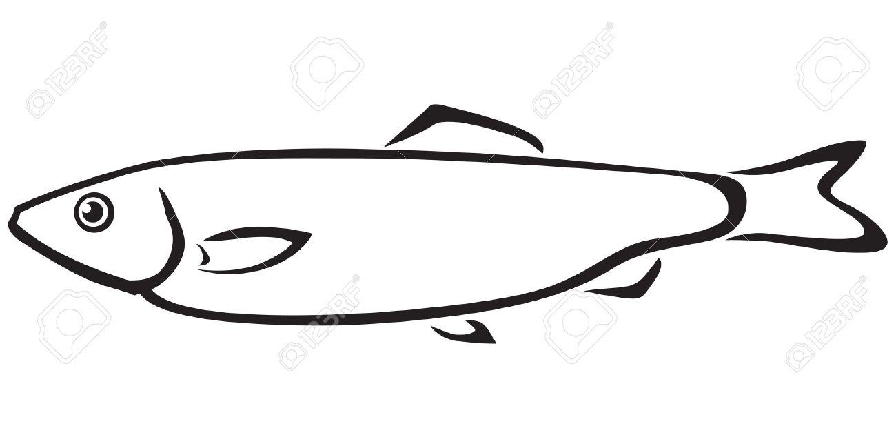 Sardine clipart Coloring drawings Sardine Sardine #14