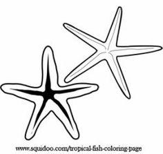 Tropical Fish clipart starfish #11