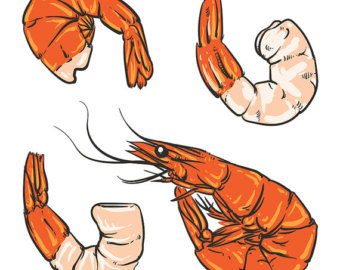 Seafood clipart shrimp cocktail Dinner party drawing Sale Shrimp