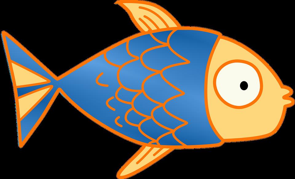 Tropical Fish clipart kid #9
