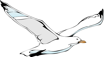 Black clipart seagull Free Clipart Seagull Panda format%20clipart