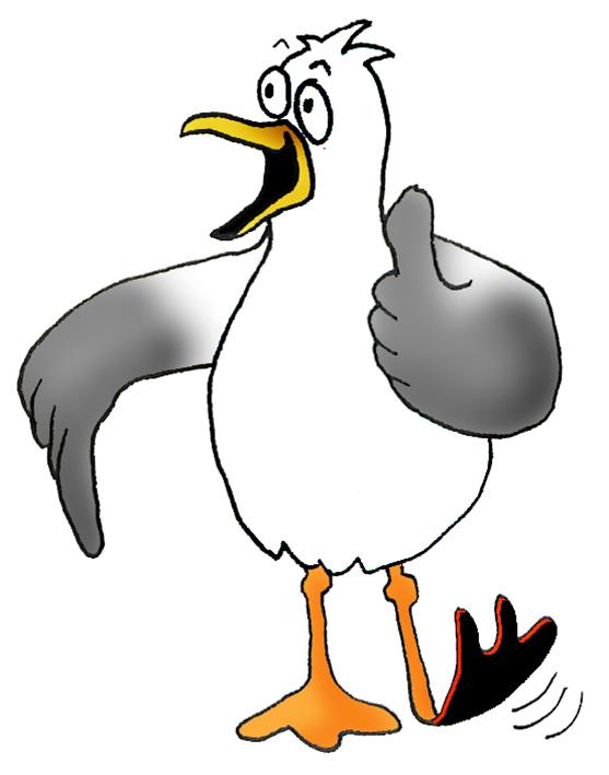 Drawn seagull cartoon Of seagull Cartoon Drawings