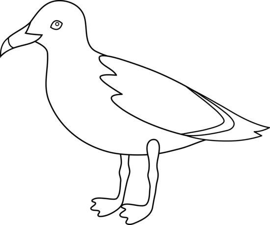 Seagull clipart outline #1