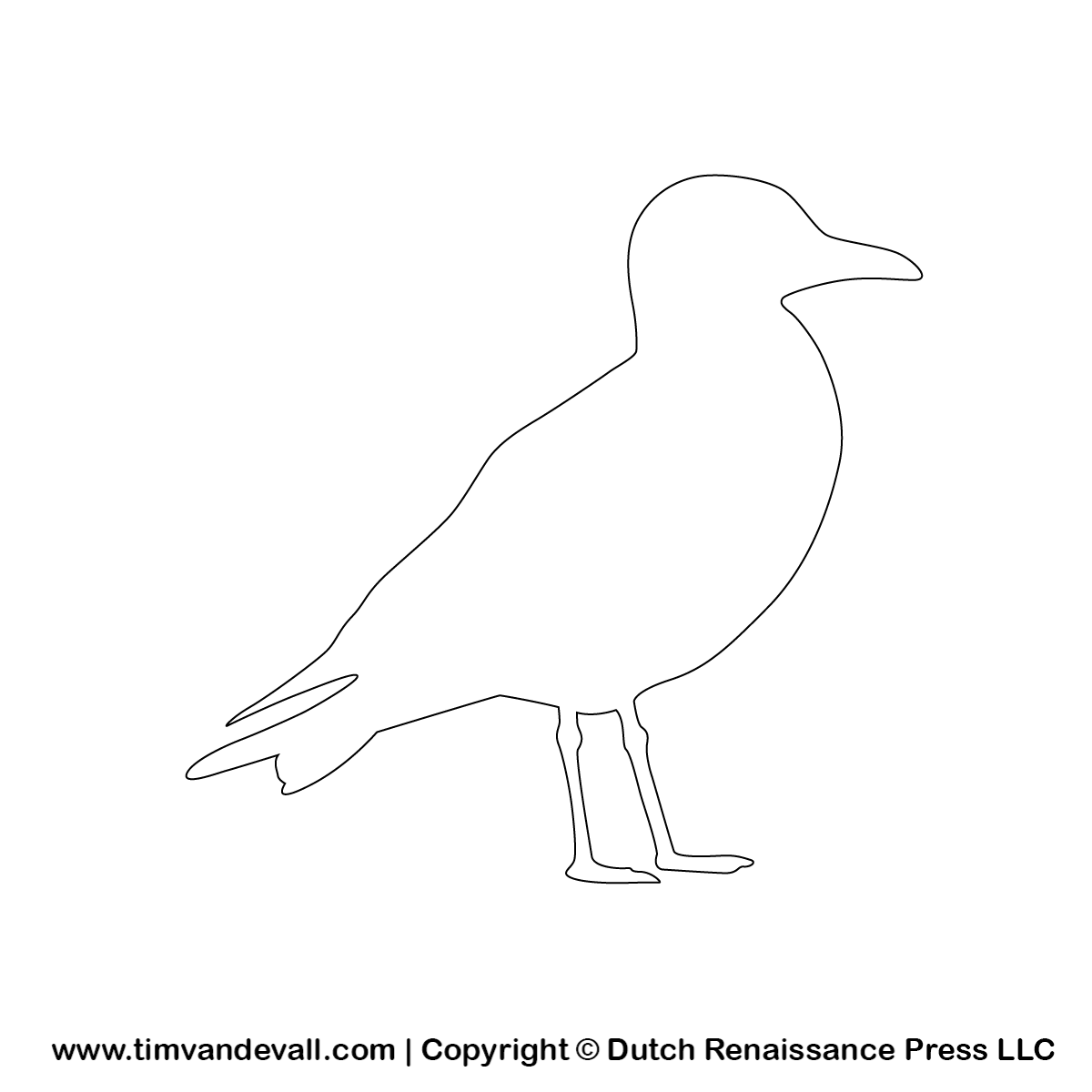 Seagull clipart outline #9