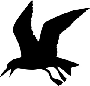 Black clipart seagull A of Image Image: Clipart