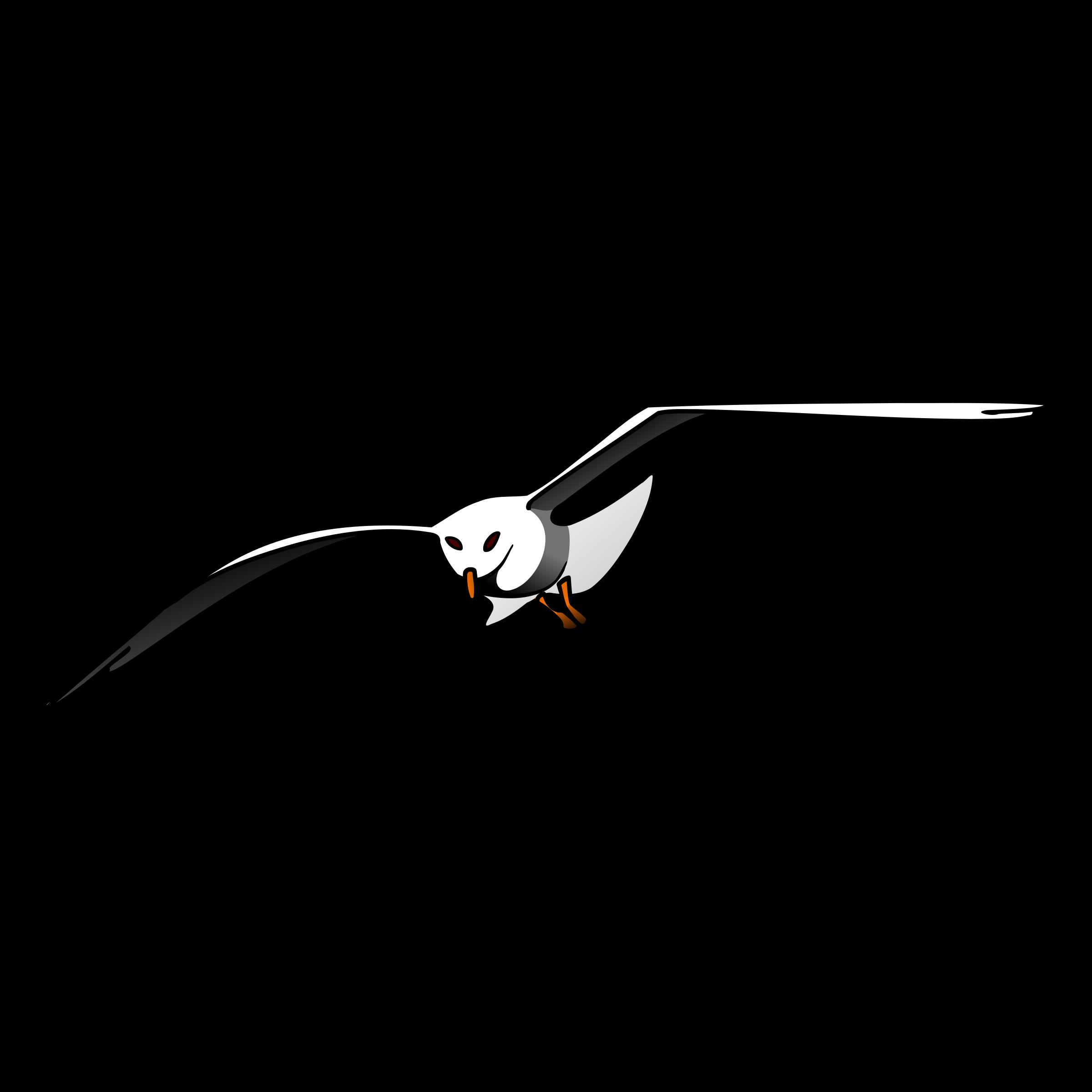 Seagull clipart transparent #12