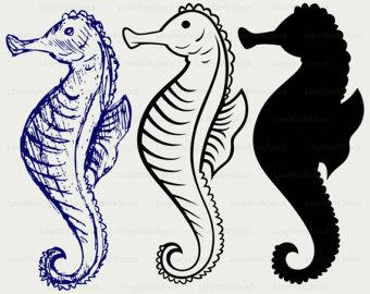 Seahorse clipart elegant #4