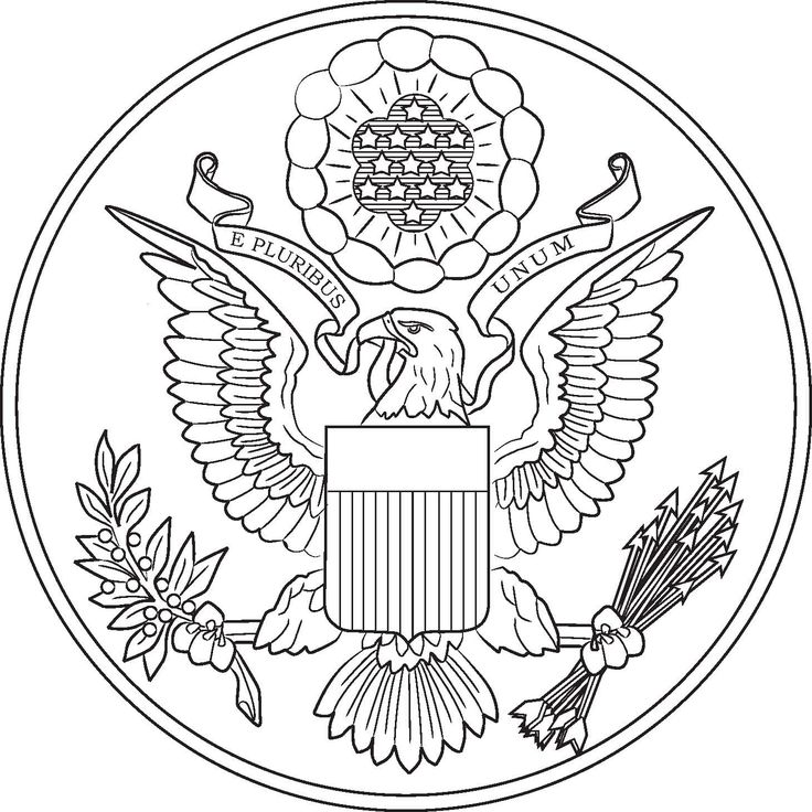 Seal clipart coloring page #11