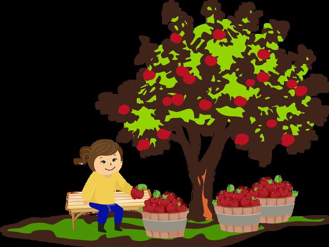 Season clipart apple tree #15