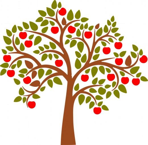 Season clipart apple tree #9