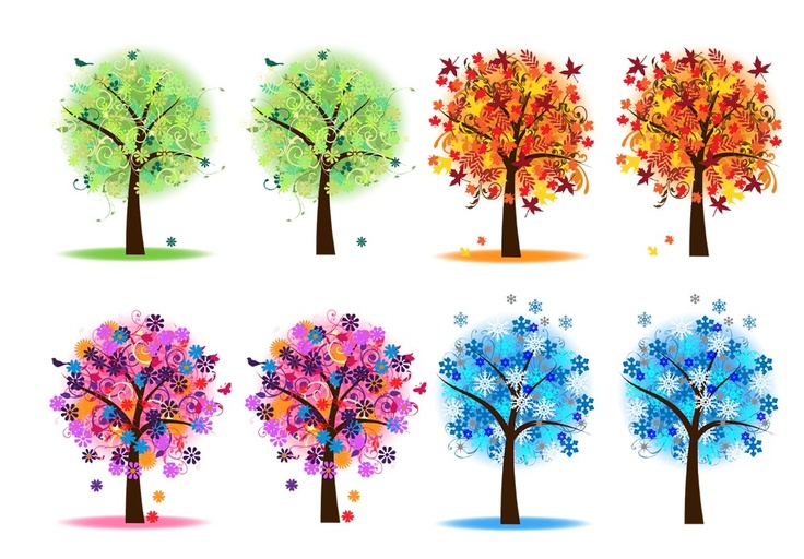 Season clipart summer tree #10