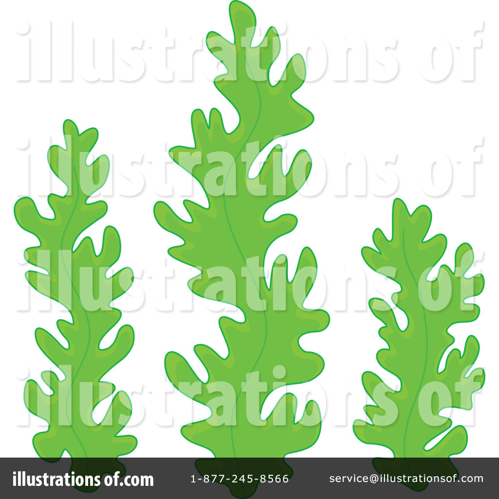 Seaweed clipart By Illustration Illustration (RF) Bannykh