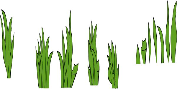 Seaweed clipart Clipart Black Clipart Grass Clipart