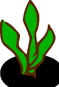 Seaweed clipart animated #5