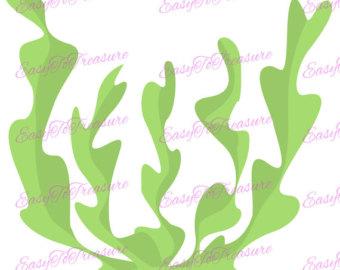 Seaweed clipart ocean plant #2