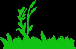 Seaweed clipart pond reed #1
