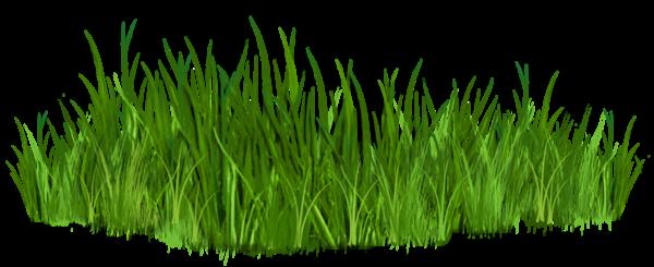 Rock clipart grass patch #11