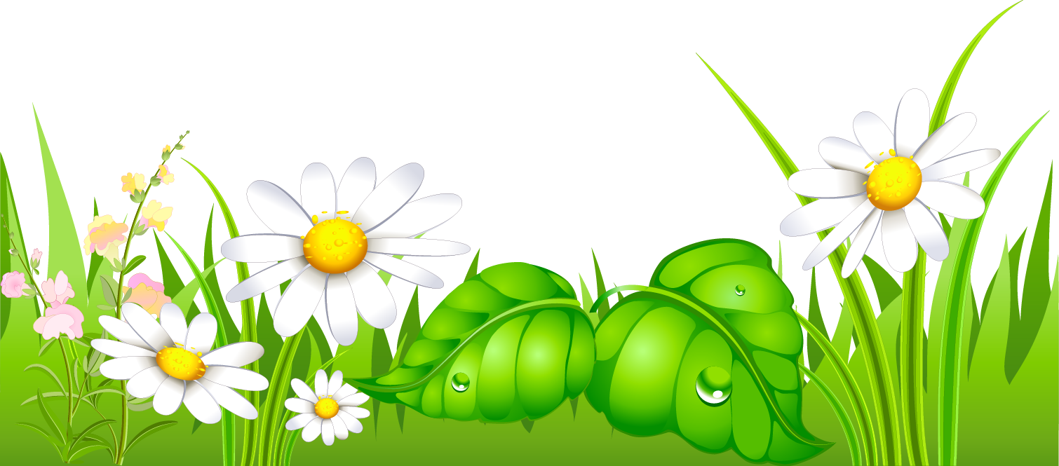 Feilds clipart lawn Clipart Grass grass collection free