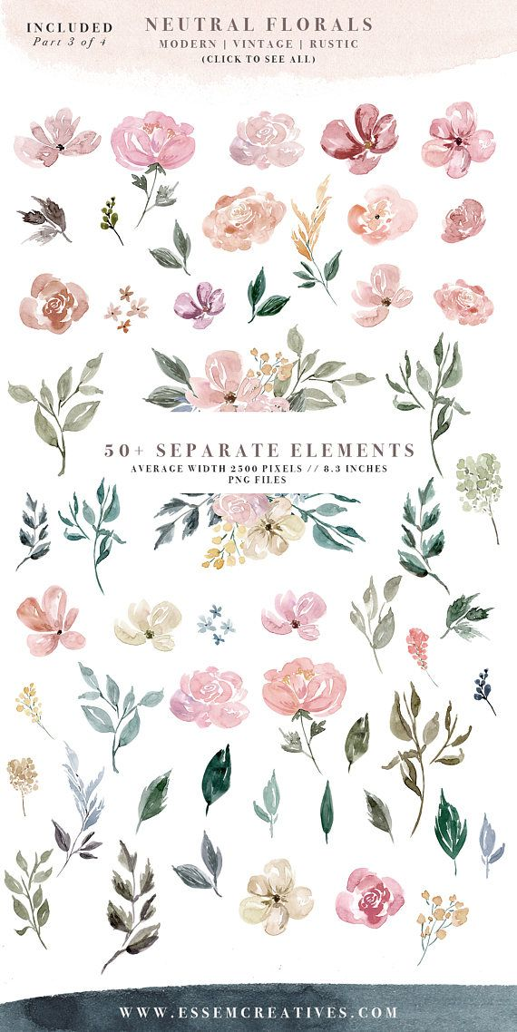 See clipart modern Clipart Watercolor on Border Clipart