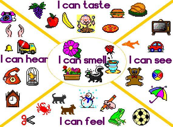 See clipart sense sight Can to 73 5 senses