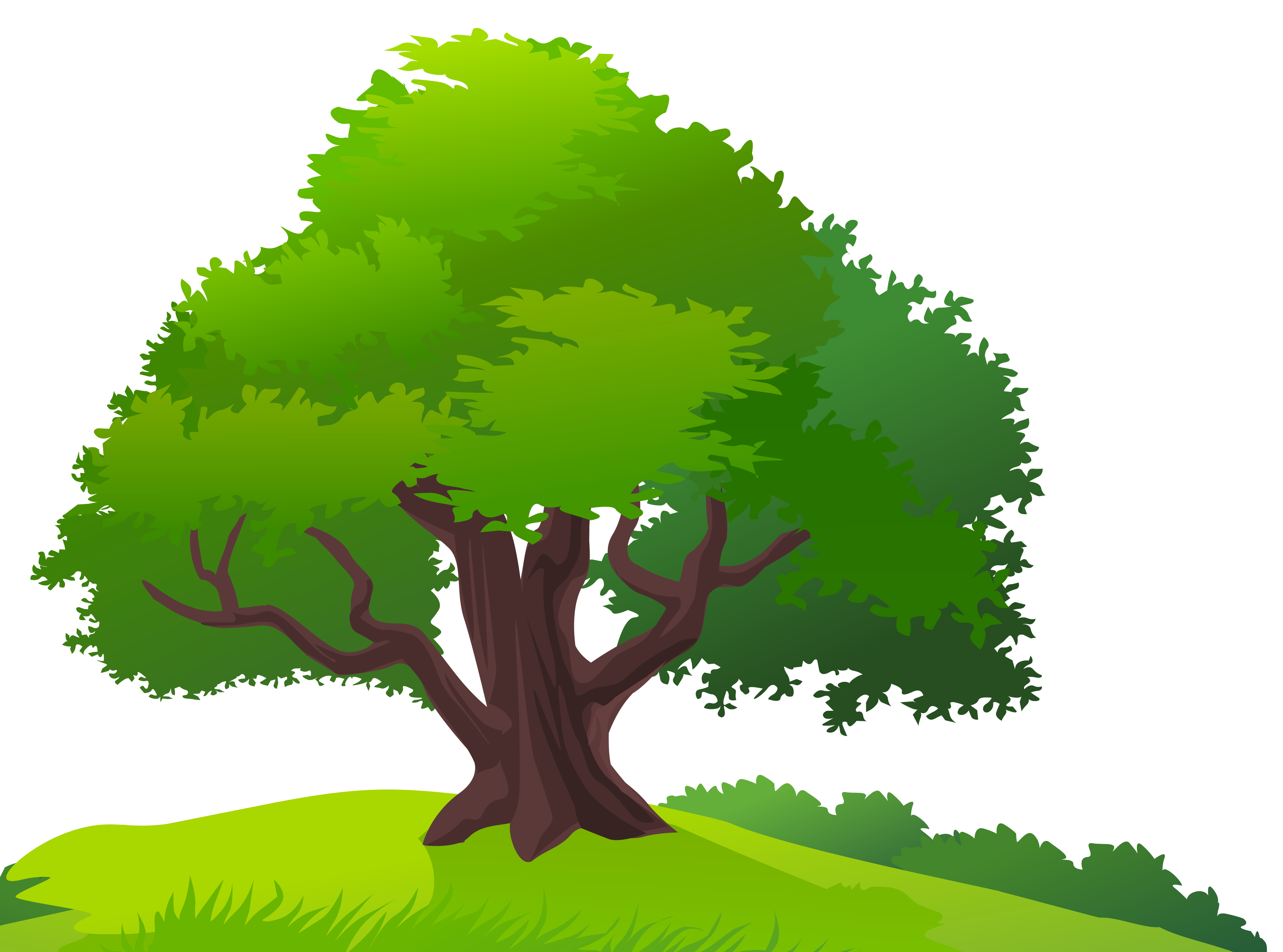 See clipart tree grass Size and Gallery Tree PNG
