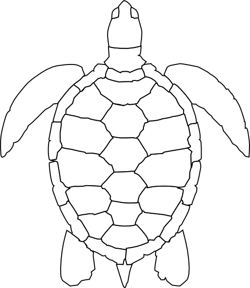 See clipart turtle top Art  Download Art image