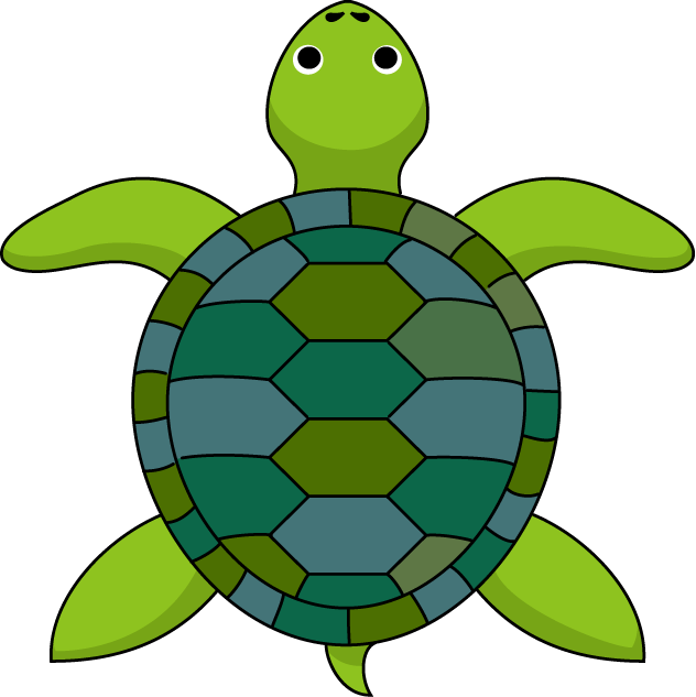 See clipart turtle top Turtoise Download #1 clipart Download