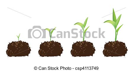 Seed clipart baby seedling  seed or Illustration art