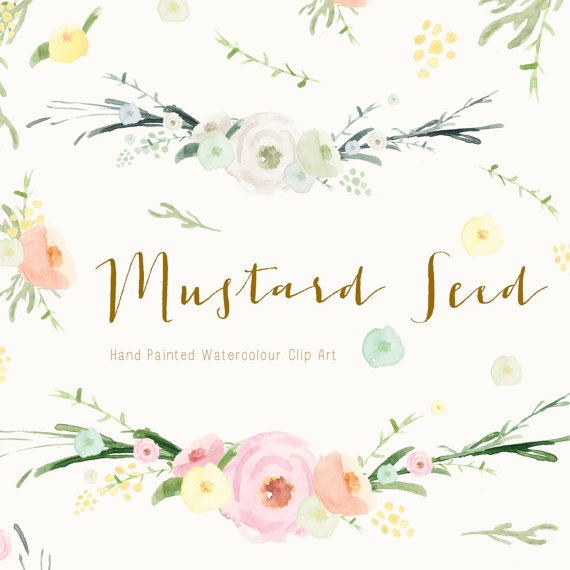 Plant clipart mustard seed Hand Seed Painted Etsy Mustard