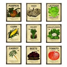Seed clipart seed packet VeGeTaBLe LIBRARY Farm: Two ViNtAgE
