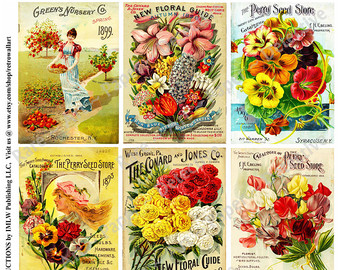 Seed clipart seed packet Clipart Flower Seed Antique Stickers