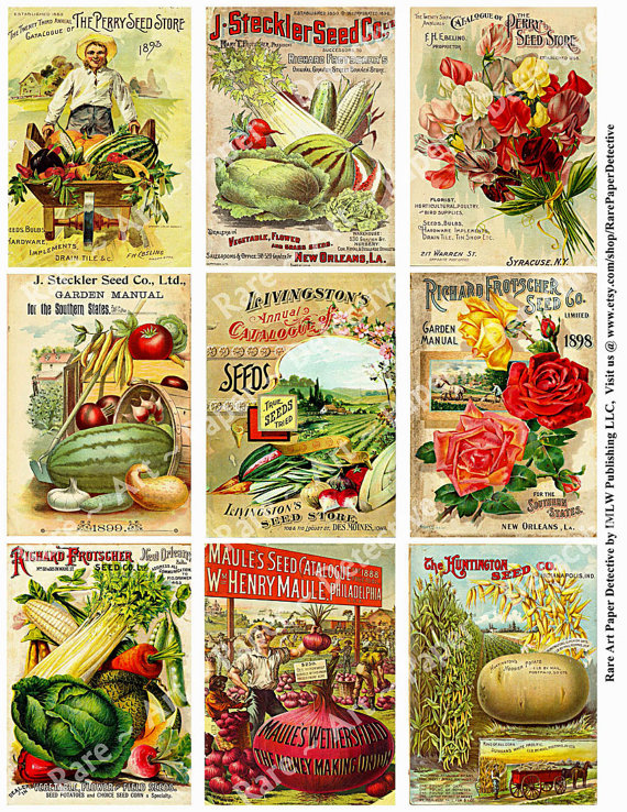 Seed clipart seed packet Prints Garden Covers Catalog Catalog
