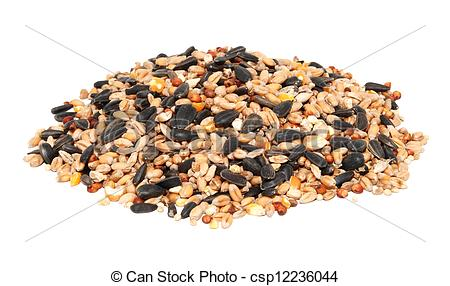Seed clipart wheat seed Including of and of wheat