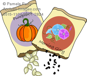 Seeds clipart And Image Packets Glory Seed