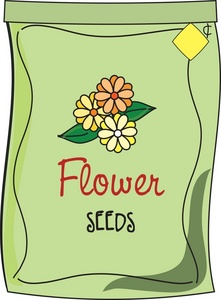 Seed clipart animated Flower Seeds Seed cliparts Clipart