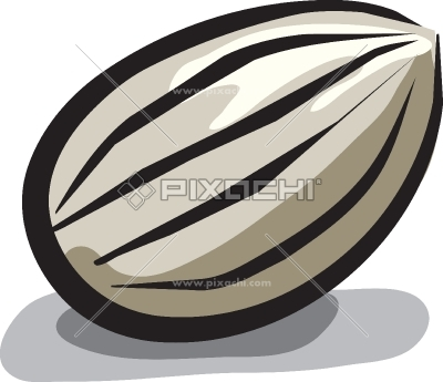 Seed clipart sunflower seed Images Free seed%20clipart Seed Free