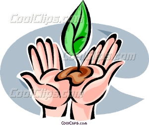 Seed clipart plant seed And Planting Seeds art Vector