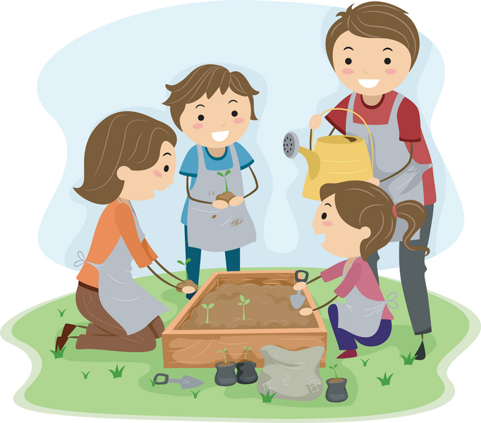 Seed clipart kid plant A Grow Seed  Plant