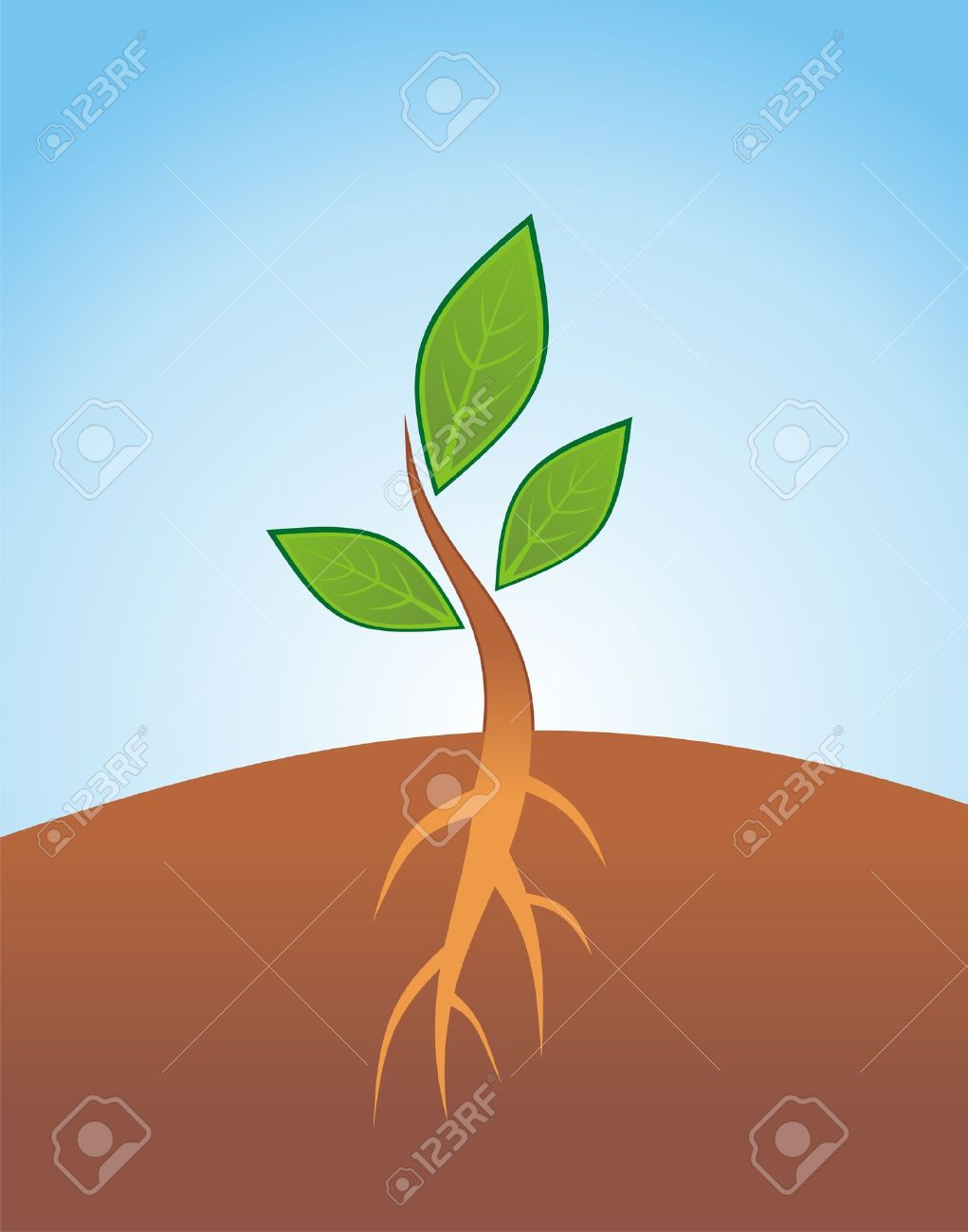 Seeds clipart little plant On Netzrim Sprouts