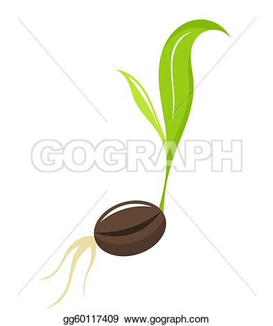 Seeds clipart seed germination Art Clipground Plant Seedling clipart